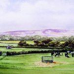 watercolour cows in landscape