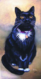 Black cat in pastel