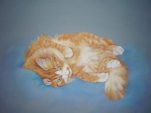 Ginger cat in pastel