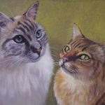 Cats in pastel