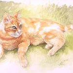 Watercolour ginger cat