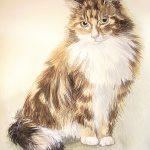 Watercolour long hair cat