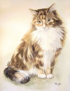 Watercolour long hair cat